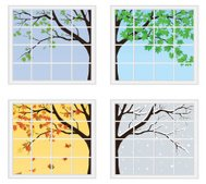 Four Seasons Behind Window