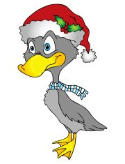 Holiday Duck