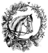 Floral ornament with Horse Head | Antique Design Illustrations