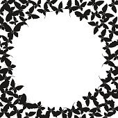 Black butterflies on white background. Silhouette of butterfly