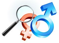 Male and Female gender symbol under magnifying glass