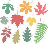 Leaf. Icon. Autumn