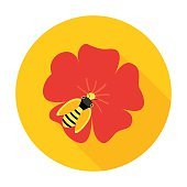 Flower with honey bee circle icon