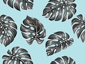Seamless pattern with monstera leaves. Decorative image of tropical foliage