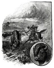Native American Indian Hunting Buffalo