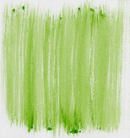 green painted abstract on canvas