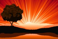 Amazing natural sunrise landscape with tree silhouette, vector i