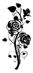 Rose Graphic