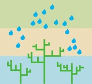 Raindrops on trees (vector)