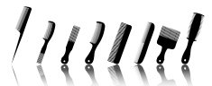 beauty hair salon combs