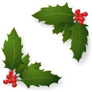 Holly Corner Border