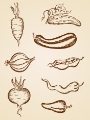 vintage vegetables set
