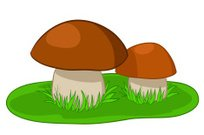 Two mushrooms with green grass freehand style painting