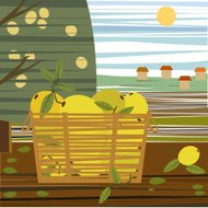 Lemons In Basket, Rural Landscape