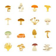 Color Icons - Edible Mushrooms