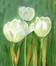 Watercolor painted white tilips on green textured background