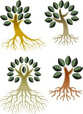 Simple trees and roots