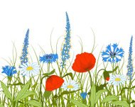 Vector flowers and grass.