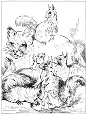 Cat with squirrels - Victorian engraving