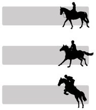 equestrian sports banner