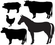 Farm Animal Silhouettes - Cow, Horse, Pig, Chicken