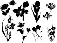 Vector Floral Silhouette icons set