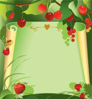Red berries frame