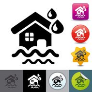 Natural disaster insurance icon | solicosi series