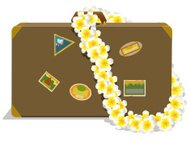 Suitcase and Lei