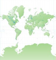 High Detail World Map Mercator Projection