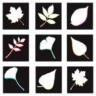 Nine Dark Leaf Squares! (vector illustration)