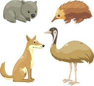 Australian four animals set 2