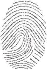Digital fingerprint  - made with numbers !!! (vector)