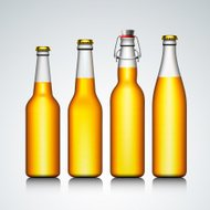 Beer bottle clear set with no label