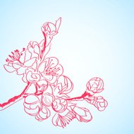 cherry flowers made in line art style