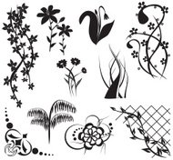 design elements with flora