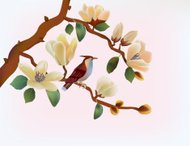 Blooming magnolia in spring, a bird .