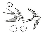 Swallows and clouds illustration