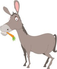 Donkey with carrot