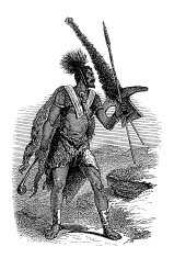 'Basotho warrior, South Africa (antique wood engraving)'