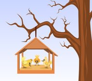 Bird house with birds are hung on branch