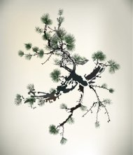 Ink style Pine Tree