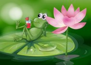 Frog above the waterlily