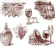 Pictures of grape wine