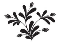 vector black silhouette of floral element