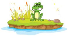 frog and a water