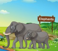 small and big elephant with a signboard