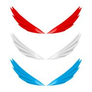 Abstract colorful wings