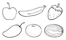 Sketch of various fruits