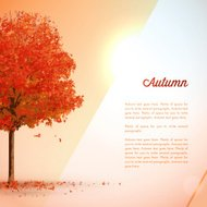 Autumn / Fall Background